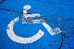 Sex and Physical Disabilities