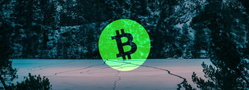 bitcoin cash logo in the woods with snow