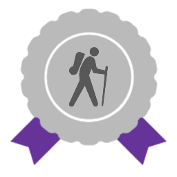 Silver award with purple ribbons and traveller icon