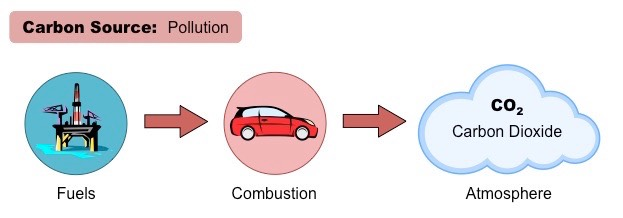 combustion carbon and its compound