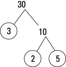 factor tree of prime factors of 30