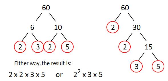 prime factors of 60 factor tree