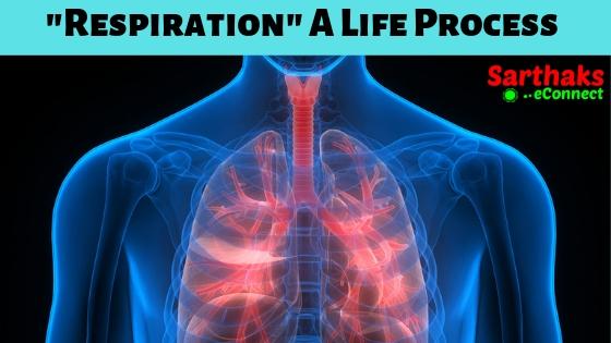 respiration - life processes