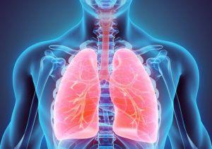 respiration- life process