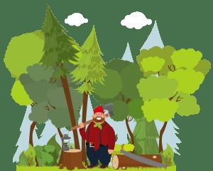 deforestation management of natural resources