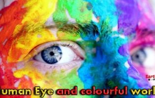 human eye and colourful world