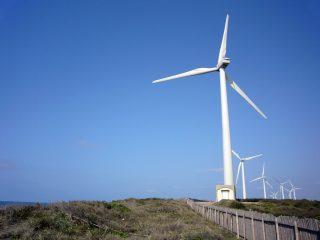 wind energy by wind mills