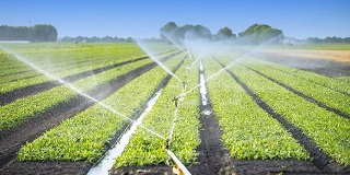 irrigation agricultural practices