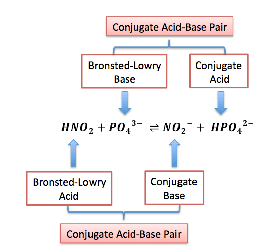Bronsted Concept of Acids and Bases