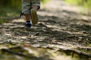Boy walking down a path