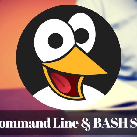 Linux Command Line Interface and BASH Scripting