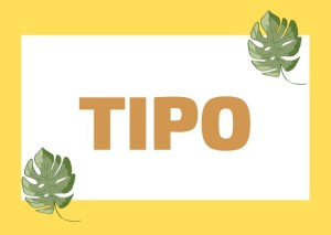 the word tipo in Italian