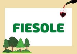 Fiesole Tuscany Italy
