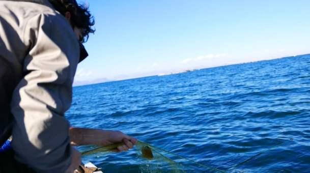 L&K#9 l Apprendre à pêcher sur le lac Titicaca