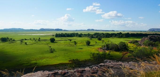 Vue sur le bush nord australien