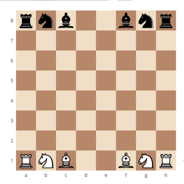 How to correctly set up a chessboard, how to place the bishops on a chessboard, how to set up a chessboard the right way, where do the bishops go on a chessboard