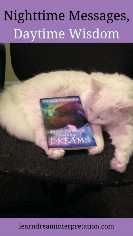 Learn the Secret Language of Dreams, book by Pamela Cummins