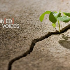 Learn[ED]Voices: Changing the World, One Student Election at a Time
