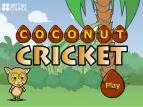 monkey playing cricket