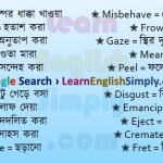 Vocabulary Part 31 f