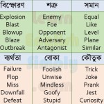 Synonyms Part 09