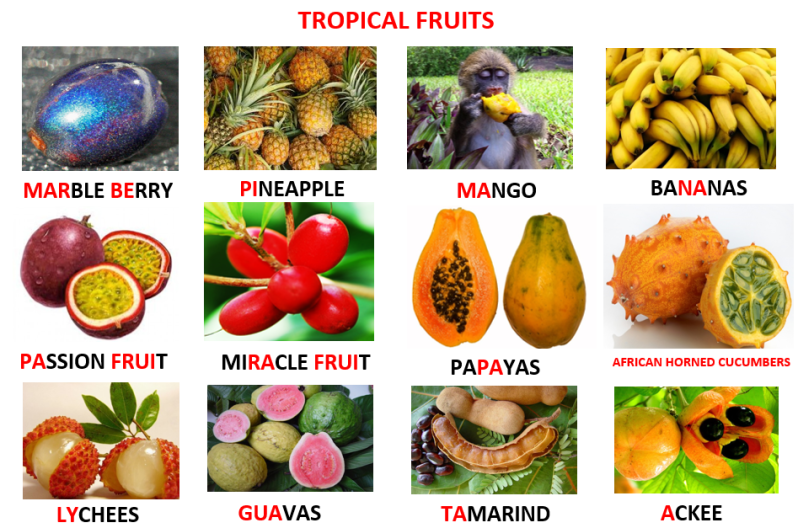 Examples of Tropical Fruits, Learn English With Africa, December 2016-English Worksheets