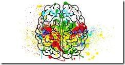 plasticite du cerveau