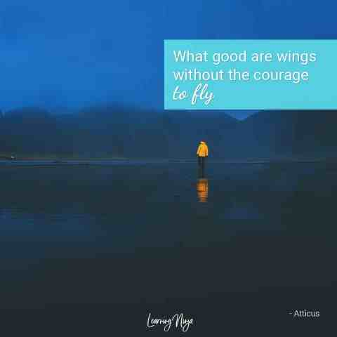 What good are wings without the courage to fly - Atticus