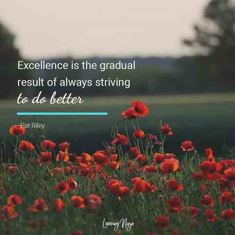 Excellence is the gradual result of always striving to do better - Pat Riley Quote