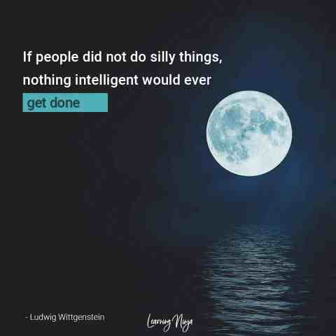 If people did not do silly things, nothing intelligent would ever get done - Ludwig Wittgenstein