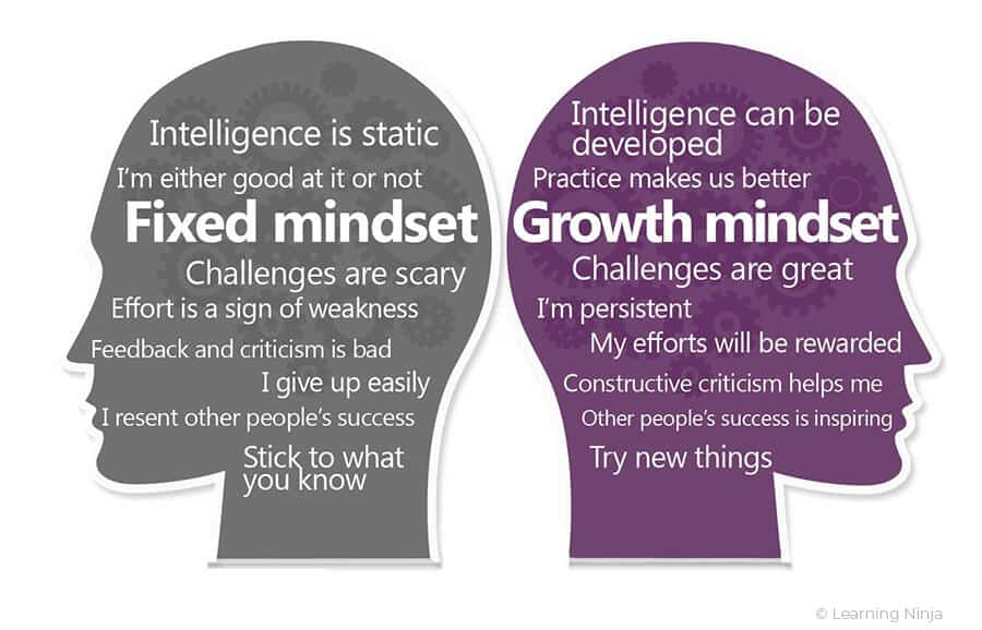 Learning styles: Fixed vs Growth Mindset