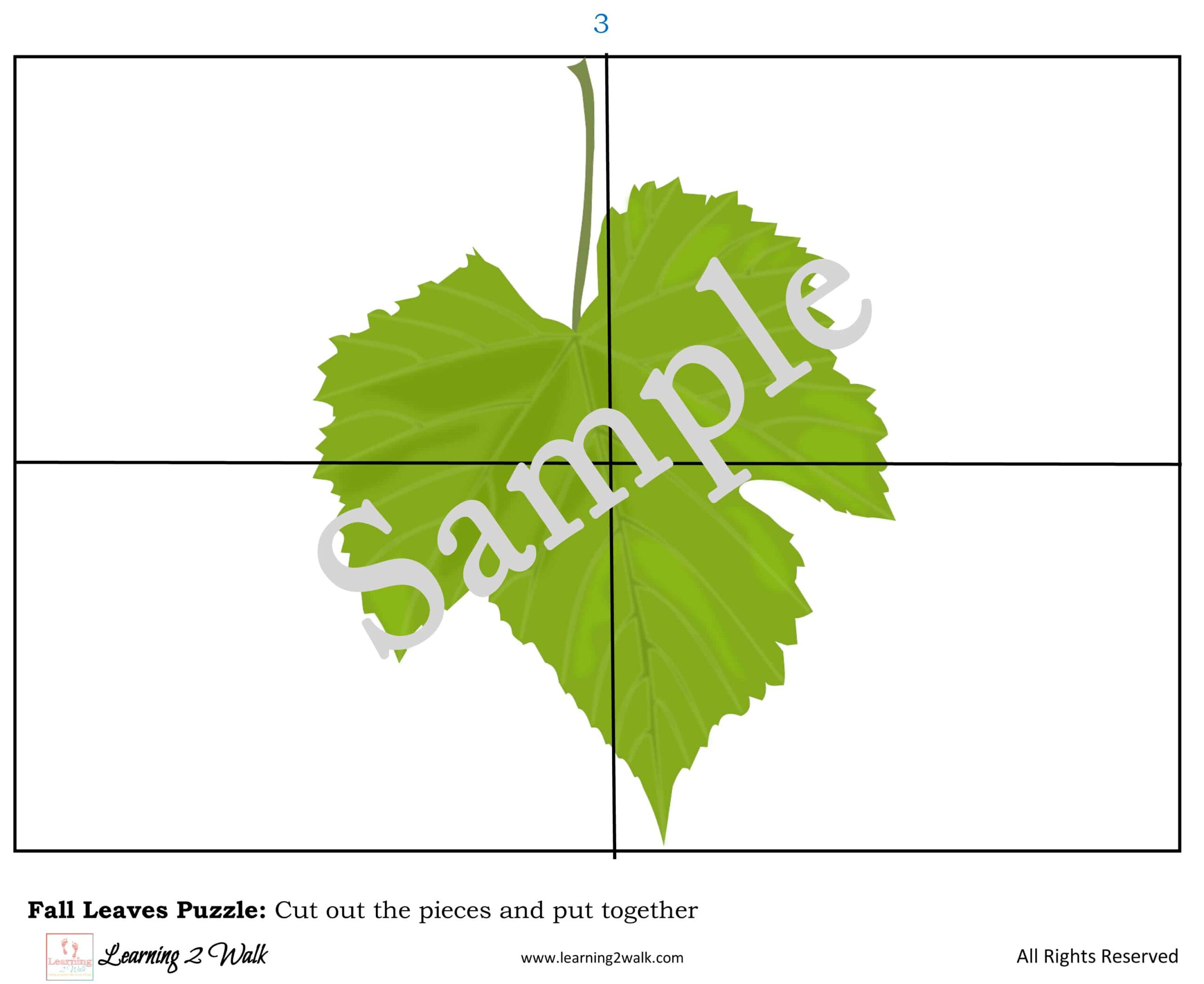 Free Fall Leaf Preschool Printable Worksheets