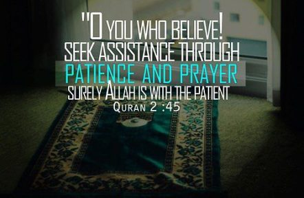 Seek assistance through patience and prayer