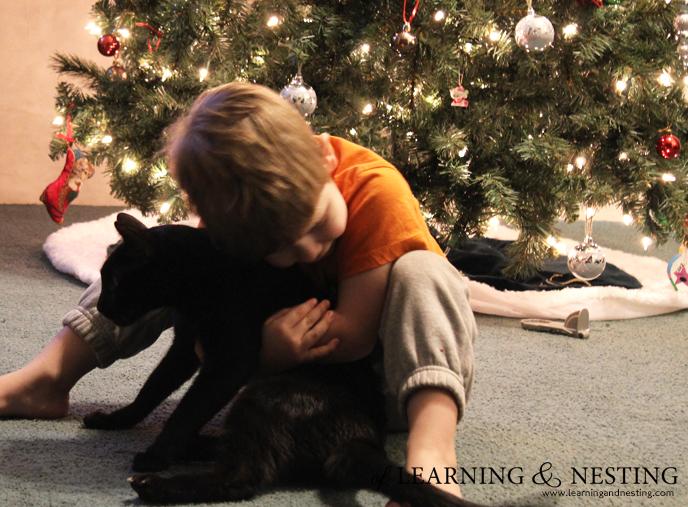 cat-preschool-christmas-tree