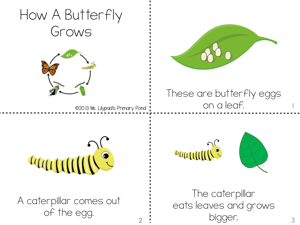 Worksheet Kidzone Worksheets Grass Fedjp Worksheet Study Site