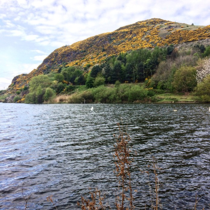 Looking up at Arthur's seat from Duddingston