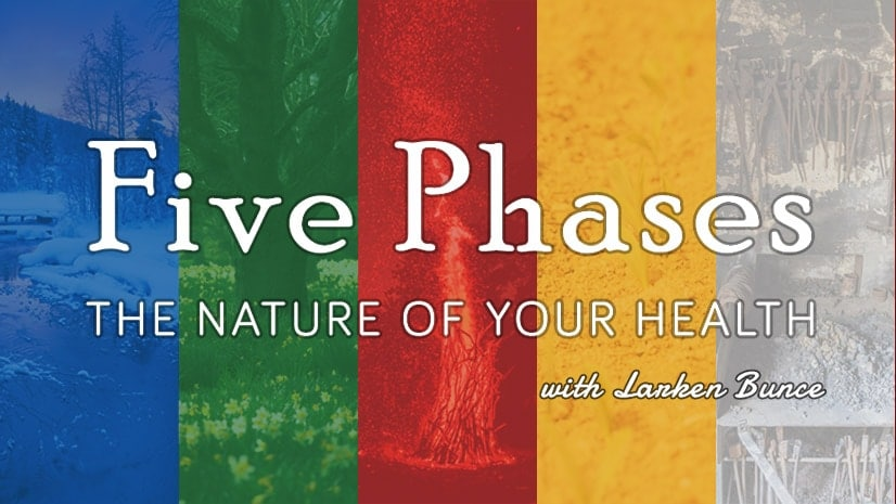 Five Phases: The Nature of your Health