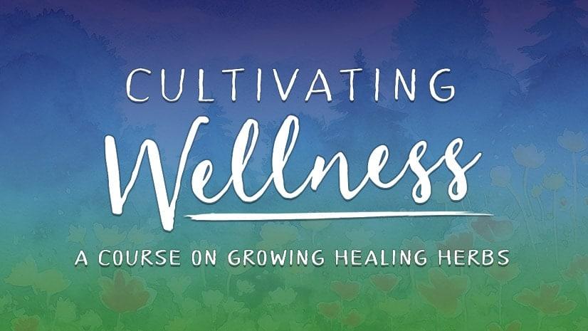 Cultivating Wellness
