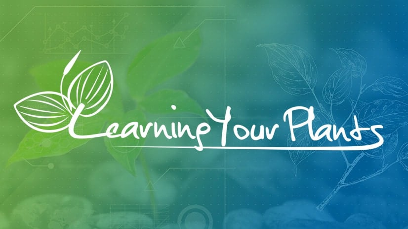 Learning Your Plants