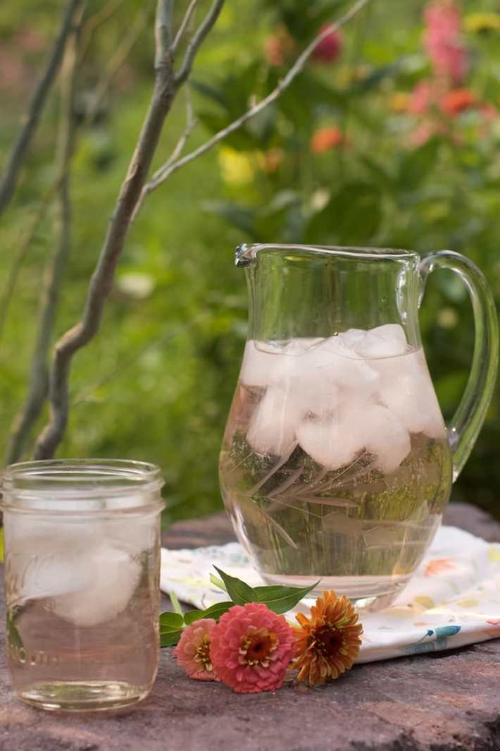 Cold Brew Tulsi Tea