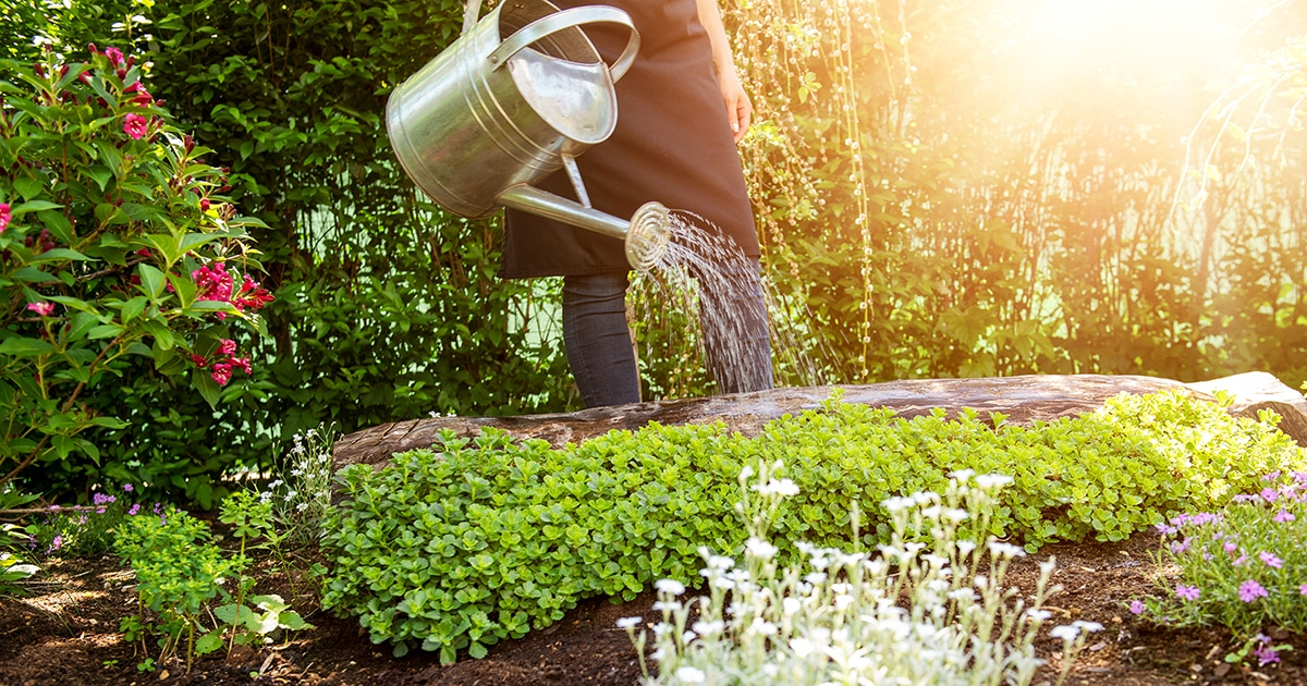A Season for Growing: Spring Gardening Tips - LearningHerbs on Gardening  id=16771