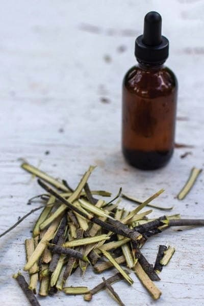 Willow Tincture