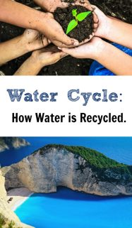 Water Cycle Lesson and Printable