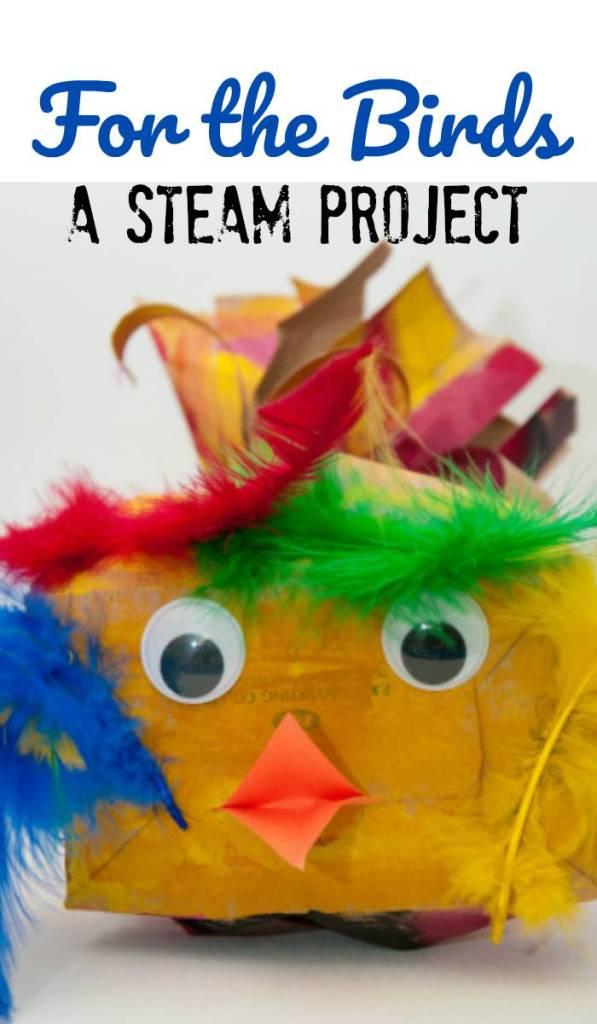 STEAM project for Kids. Bird Craft
