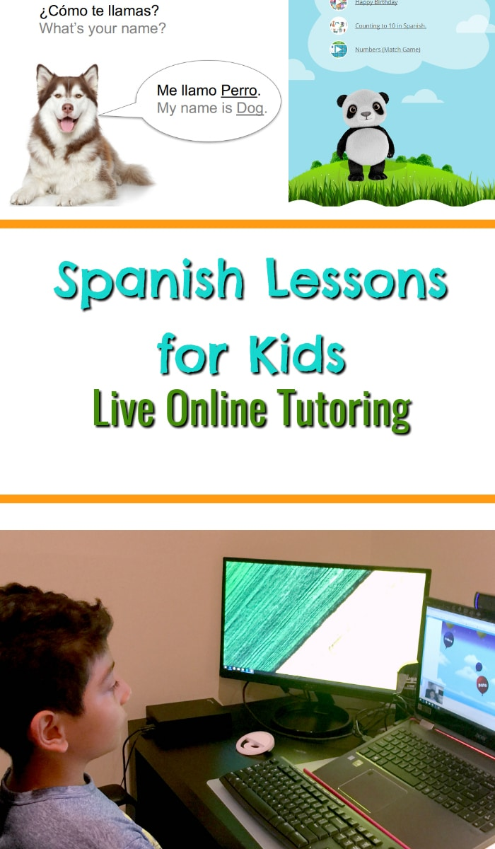 Live,One-on One, Online Tutoring
