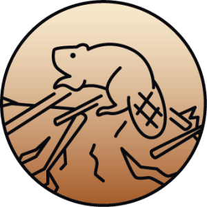 Sketch of a beaver on a brown gradient background