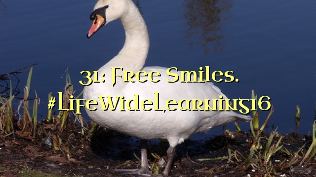 31: Free Smiles. #LifeWideLearning16