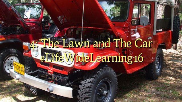 4: The Lawn and The Car #LifeWideLearning16