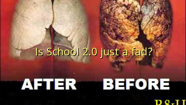 Is School 2.0 just a fad?