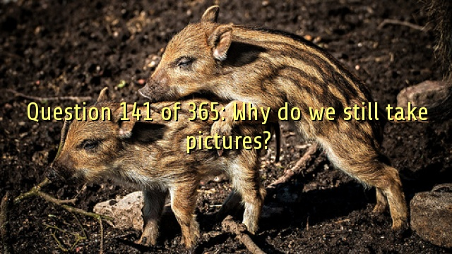 Question 141 of 365: Why do we still take pictures?